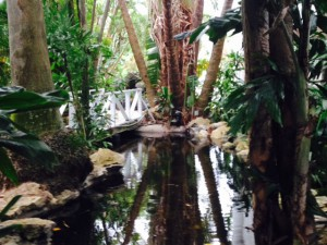 Bahia Mar Garden