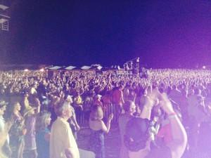 Tortuga Crowd