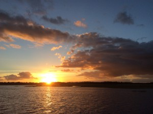 Sunrise Pine Island